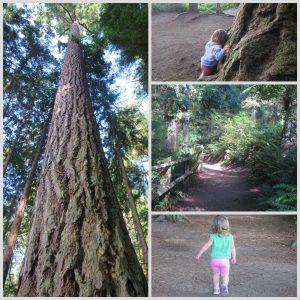 Deception Pass State Park with Toddler