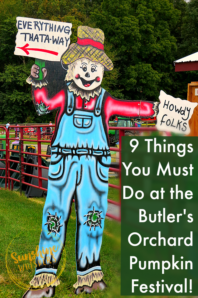 butlers orchard pumpkin festival