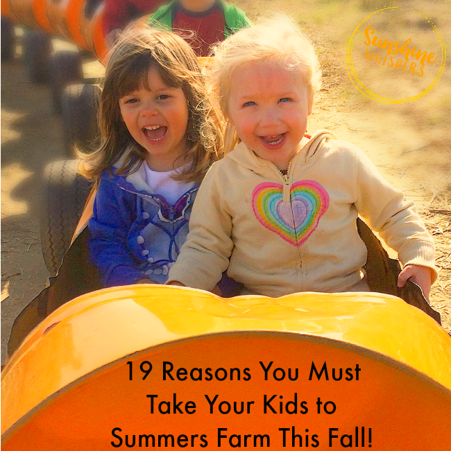 19 Reasons You Must Take Your Kids to Summers Farm This Fall!