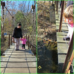Patapsco Valley State Park Nature Walk
