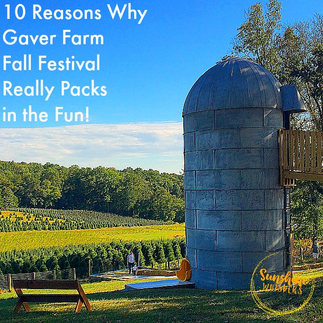 10 Reasons Why the Gaver Farm Fall Festival in Mount Airy Packs in the Fun!