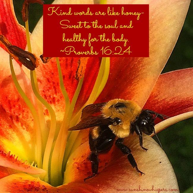 sweet honey for the soul