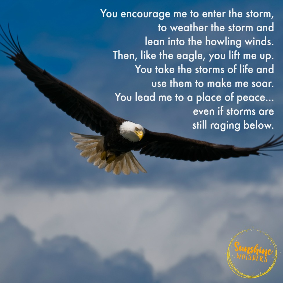 Soaring Above the Storms: A Prayer for Focus