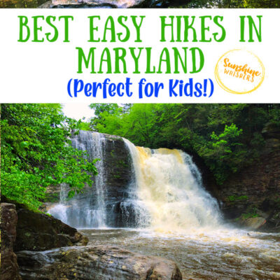 The Best Easy Hikes In Maryland That Are Perfect For Kids!