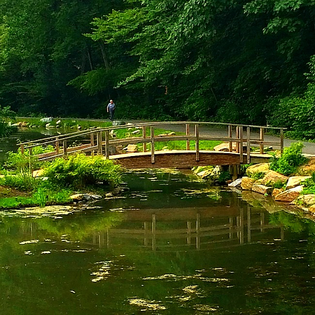 brookside gardens gude gardens