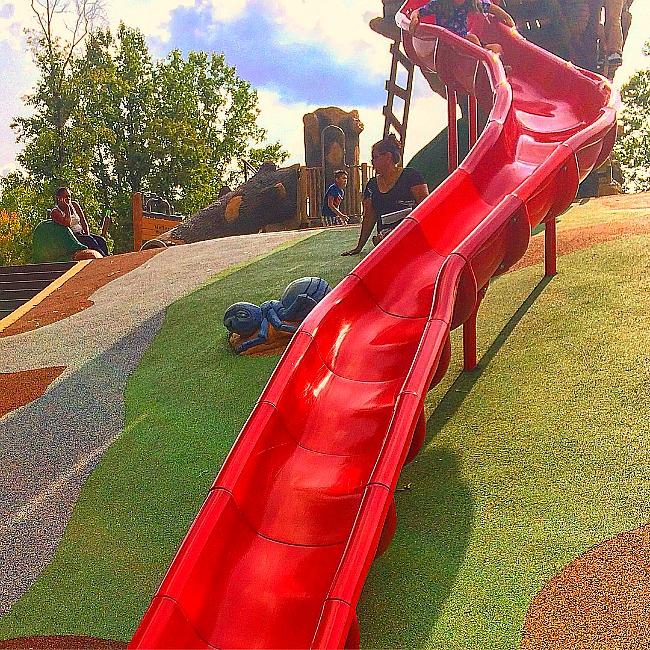 woodland wonderland playground