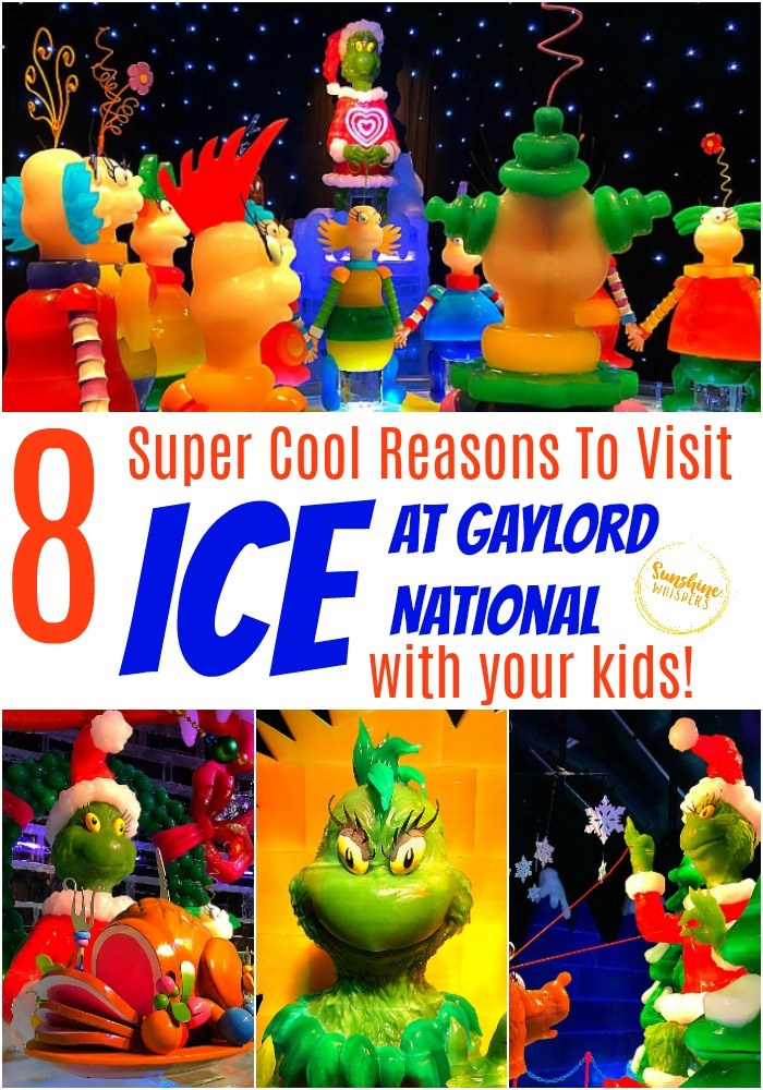 ICE at Gaylord National