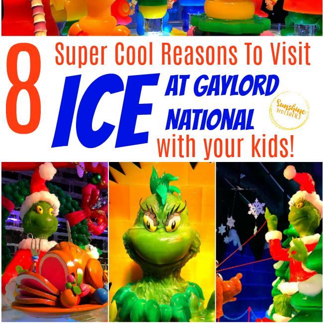 ICE at Gaylord National
