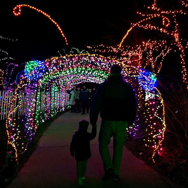Christmas Lights In The DC Area