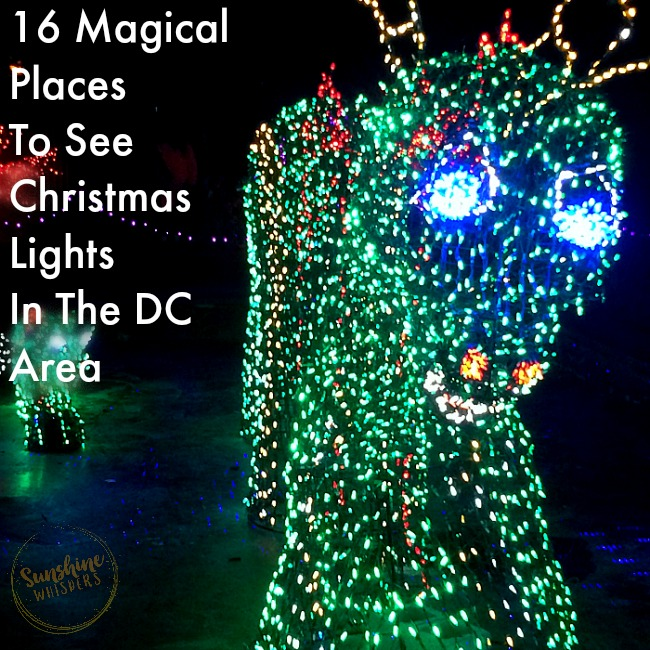 16 Magical Places To See Christmas Lights In The DC Area