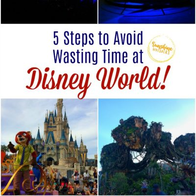 5 Ways To Avoid Wasting Time at Walt Disney World