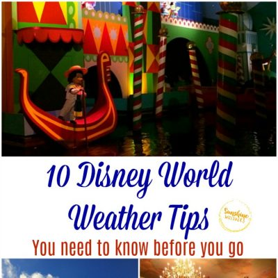 10 Disney World Weather Tips You Need To Know Before You Go