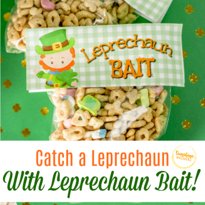 Leprechaun Bait To Catch Your Perfect St. Patrick's Day Treat!