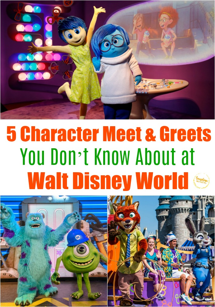 character meet and greets disney world