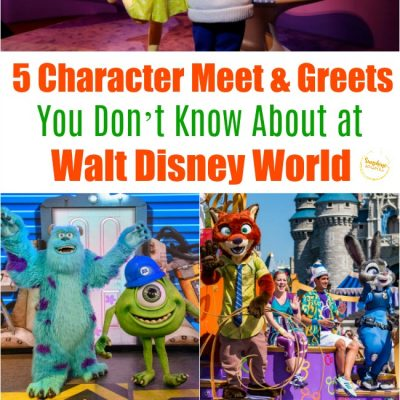 5 Character Meet & Greets You Don't Know About at Walt Disney World