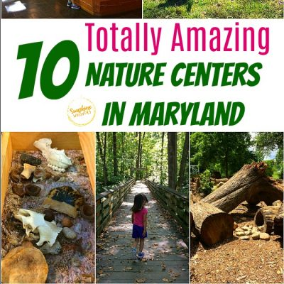 10 Nature Centers In Maryland That Will Spark Your Child's Love Of Nature!