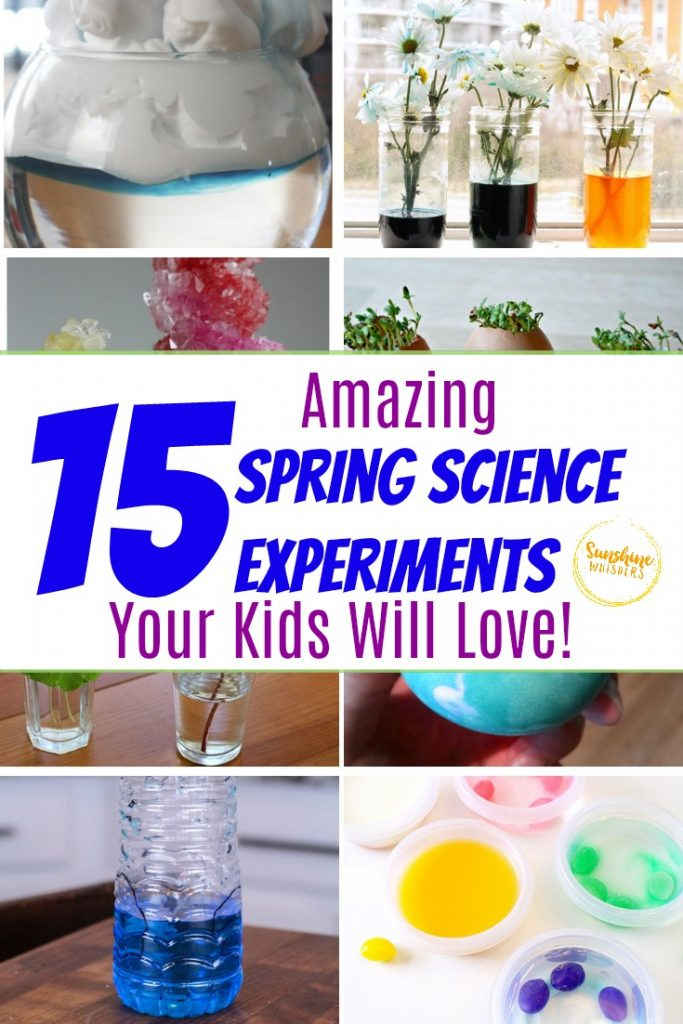 spring science experiments kids will love