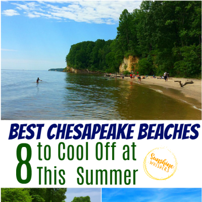 The 8 Best Chesapeake Beaches To Cool Off At This Summer
