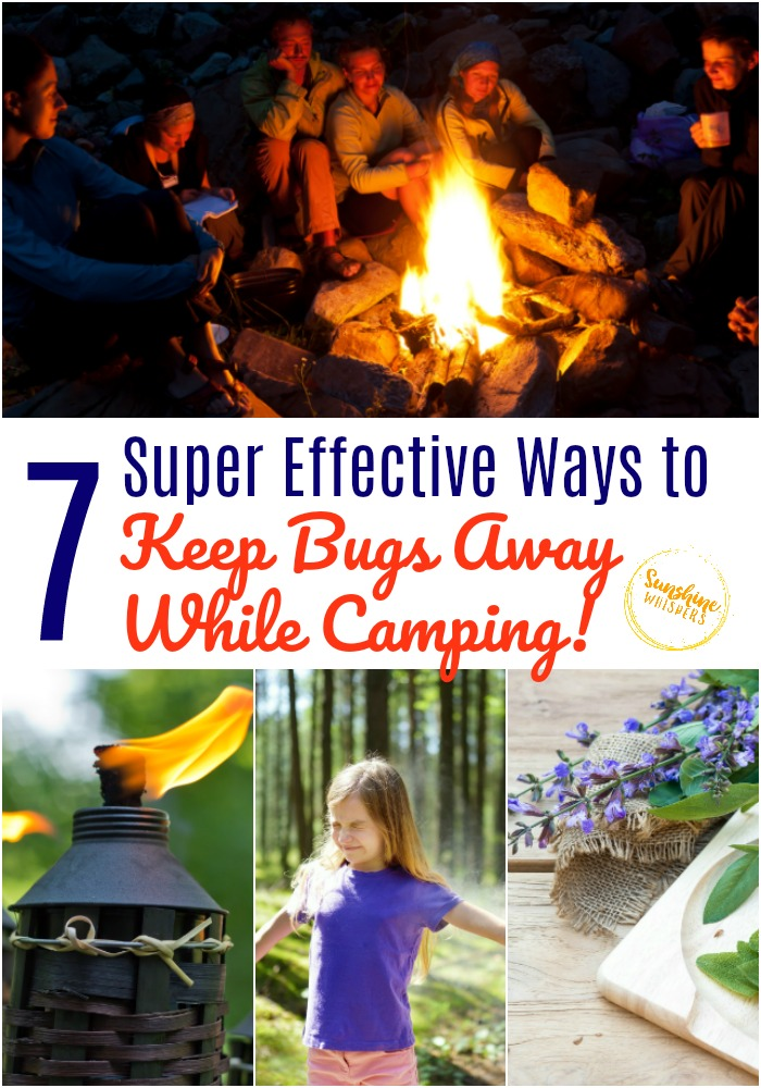 keep bugs away while camping