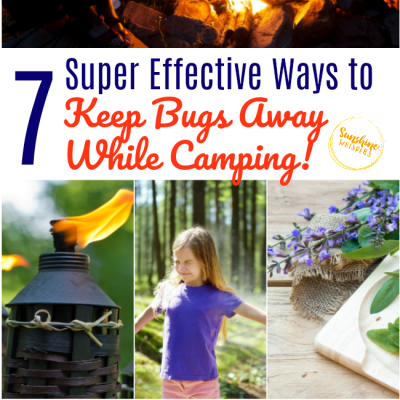 7 Super Effective Ways To Keep Bugs Away While Camping