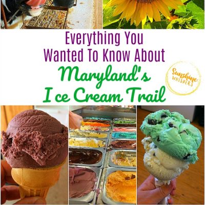 Everything You Wanted To Know About Maryland's Ice Cream Trail!