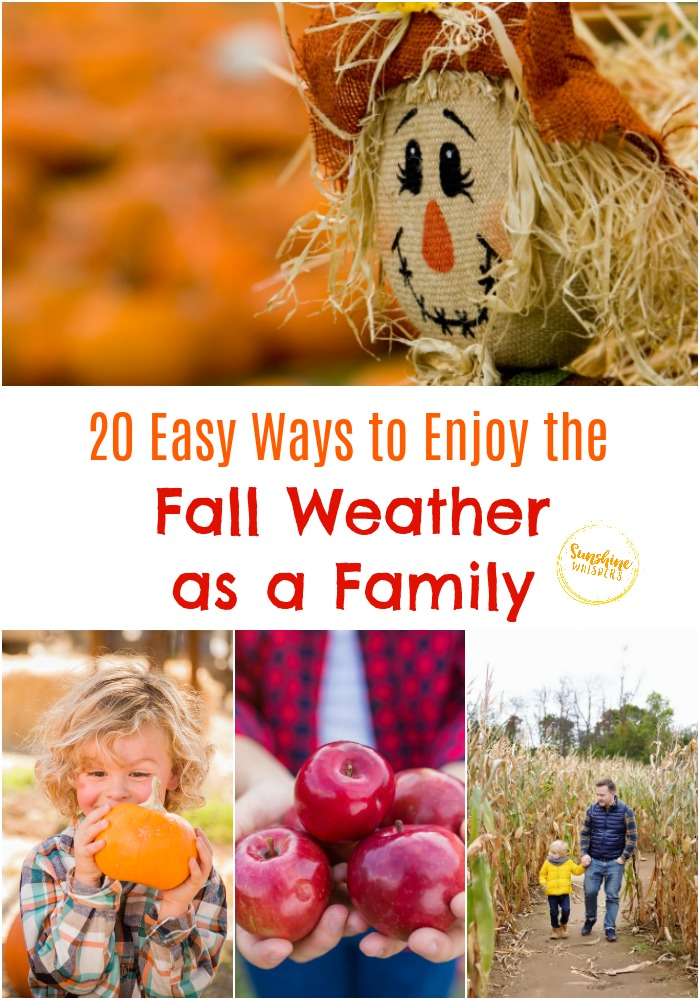 enjoy fall weather as a family