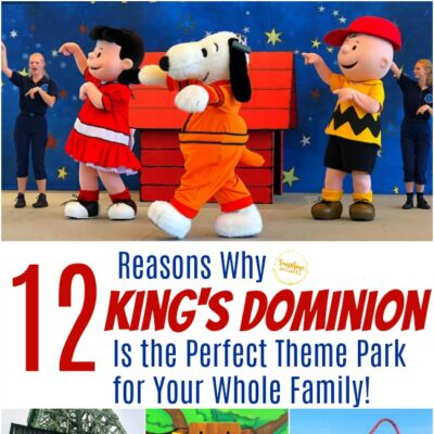 12 Reasons Why King's Dominion Is The Perfect Theme Park For Your Whole Family!