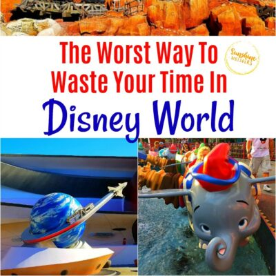 The Worst Way To Waste Your Time In Disney World