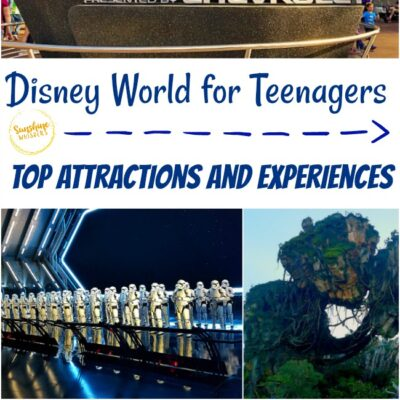 Top Attractions and Experiences – Disney World for Teenagers