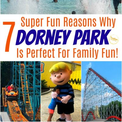 7 Super Fun Reasons Why Dorney Park Is Perfect For Family Fun!