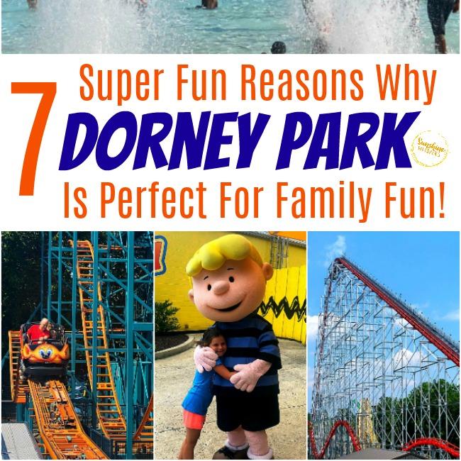 dorney park