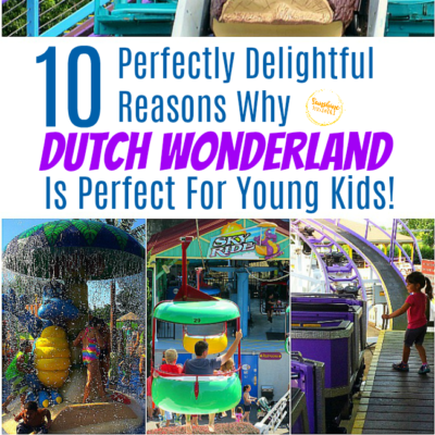 10 Perfectly Delightful Reasons Why Dutch Wonderland Is Perfect For Young Kids!