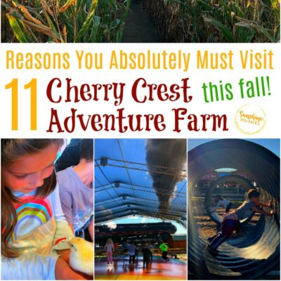 11 Reasons You Absolutely Must Visit Cherry Crest Adventure Farm This Fall!