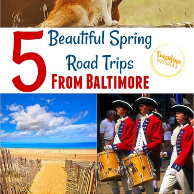 5 Beautiful Spring Road Trips from Baltimore