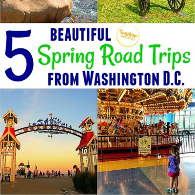 5 Beautiful Spring Road Trips from Washington DC