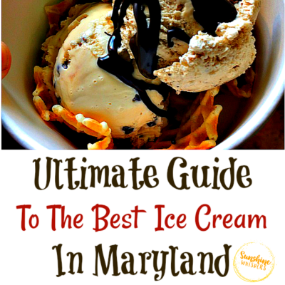The Ultimate Guide To The Best Ice Cream In Maryland (Updated For 2021)