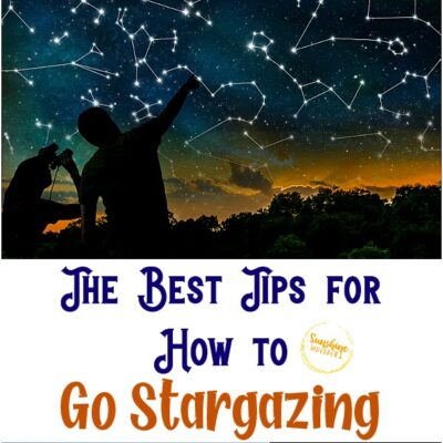 The Best Tips for How to Go Stargazing