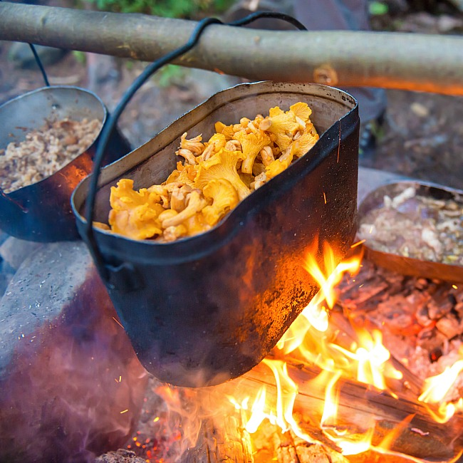 cook when you're camping