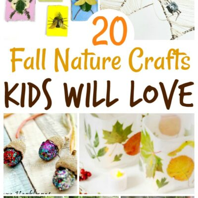 20+ Fall Nature Crafts Kids Will Love