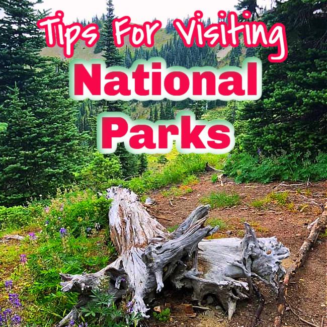 tips for visiting national parks